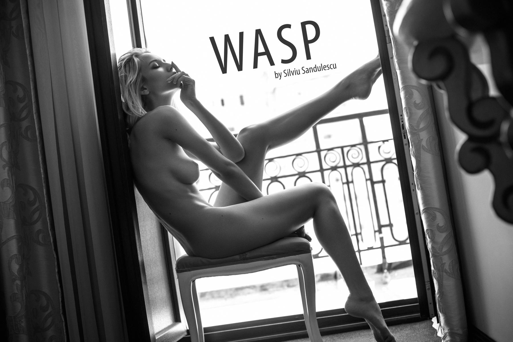 Monica Wasp